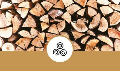 Stufa a legna e a pellet: quando acquistarla?
